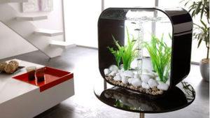 современные аквариумы