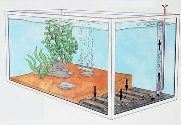 Донный фильтр для аквариума своими руками